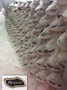 Sala de salazón repleta de jamones y paletas